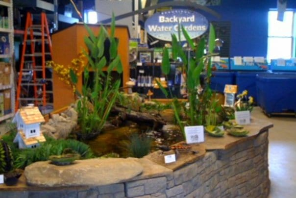 Indoor Fish Ponds : Indoor Fish Pond Kits Splash supply company - sustainable supplies and ...