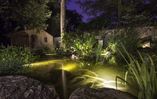 Pond Lighting 101