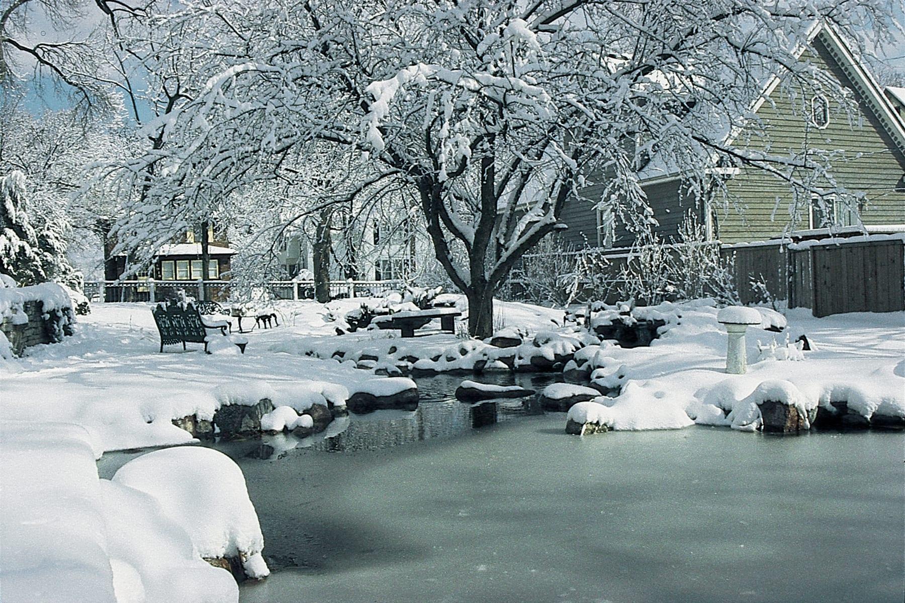 Seasonal_18_