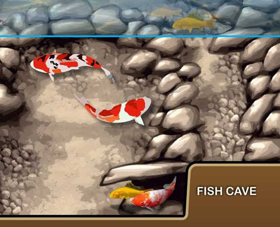 Why Your Pond Needs Fish Caves