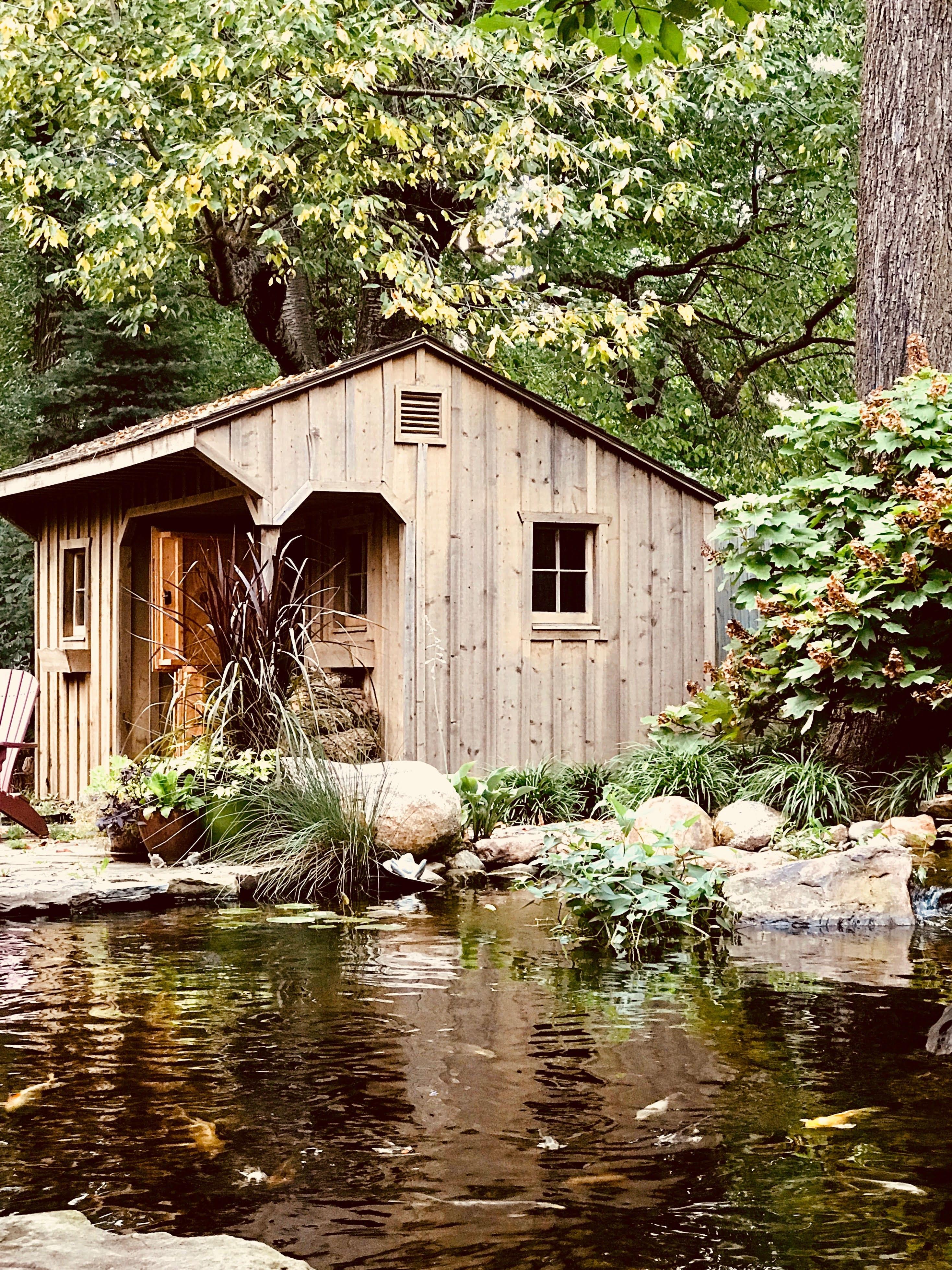Fall Pond Care