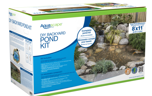 DIY Ponds: Where to Start