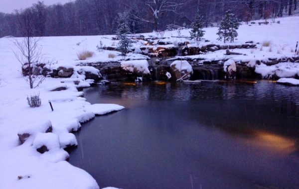 HOW TO CONTROL WINTER POND ALGAE