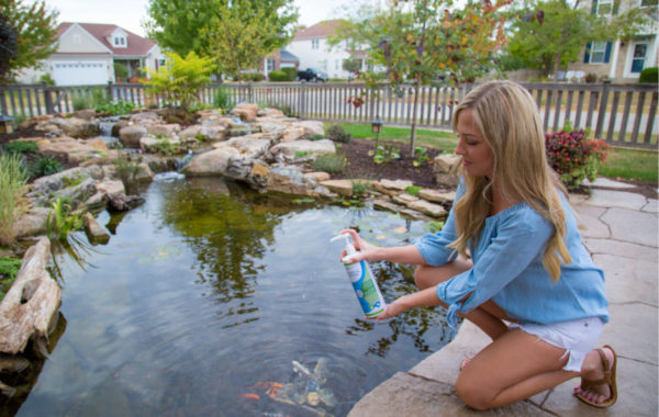 10 Ways to Keep Pond Water Clear