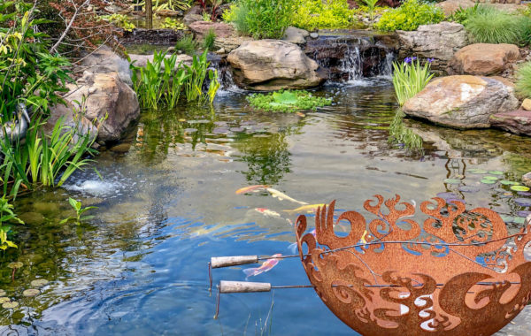 Summer: 10 Tips for Protecting Your Pond