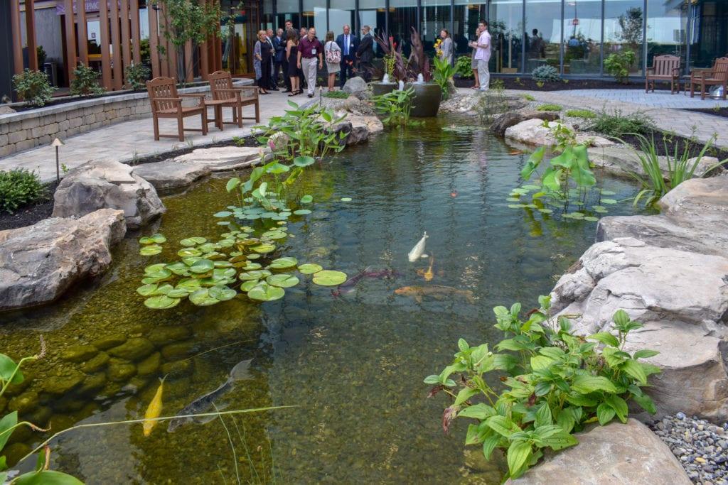 Gravel-bottom pond