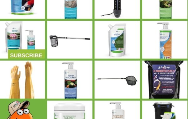 14 Best Spring Pond Care Tools