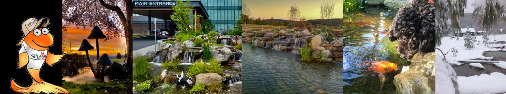 Pond Builder York, PA